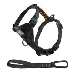 (Best No Pull Dog Harness) Kurgo Tru-Fit Smart Dog Harness