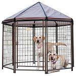 (Best Outdoor Dog Kennels) Advantek Outdoor Dog Kennel