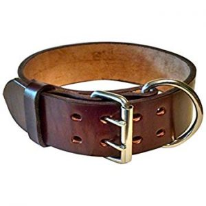 BlackJacks Leather Pit Bull Collar