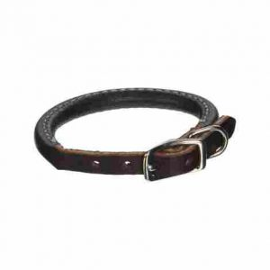 Coastal Pet Circle T Round Dog Collar