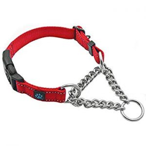 Max and Neo Stainless Steel Collar