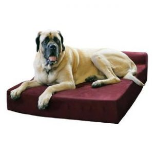 Pillow Top Orthopedic Dog Bed