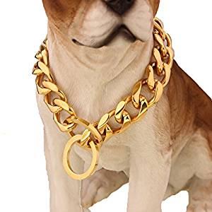 (Best Collars For PitBulls) Silver Phantom Jewelry Dog Collar