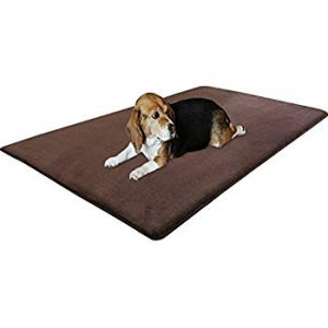 (Best Cooling Mats For Dogs) Dogbed4less Premium Foam Pet Mat