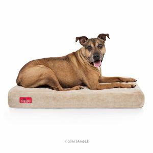 (Best Dog Beds For Labs) Brindle Pet Bed