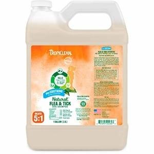 TropiClean Soothing Flea & Tick Shampoo