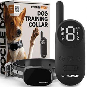 BRISON Dog Training Collar