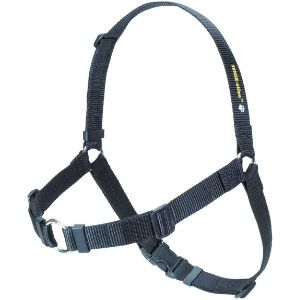 SENSE-ation Front-Less Harness