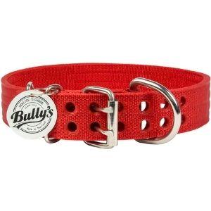 Bully Pitbull Collar